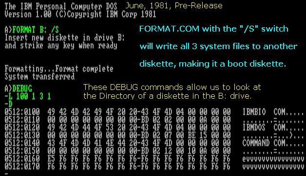 A Pre-Release Version of IBM PC DOS from June, 1981