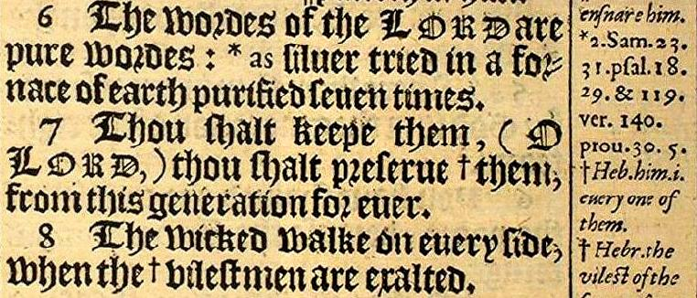 Image result for psalm 12